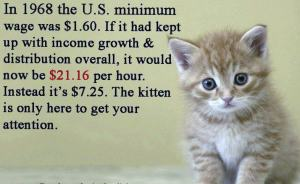 Income-inequality-kitten